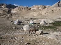 anatolia-kilim-tribal